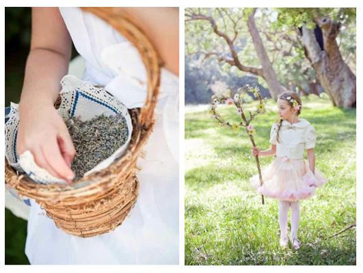 Lavender & Heart Vine